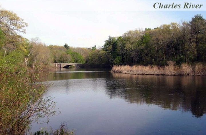 Charles-River